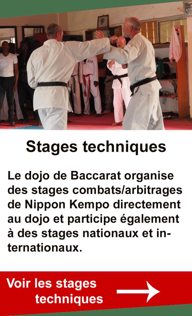 stages techniques organisés par le dojo de Nippon Kempo de Baccarat